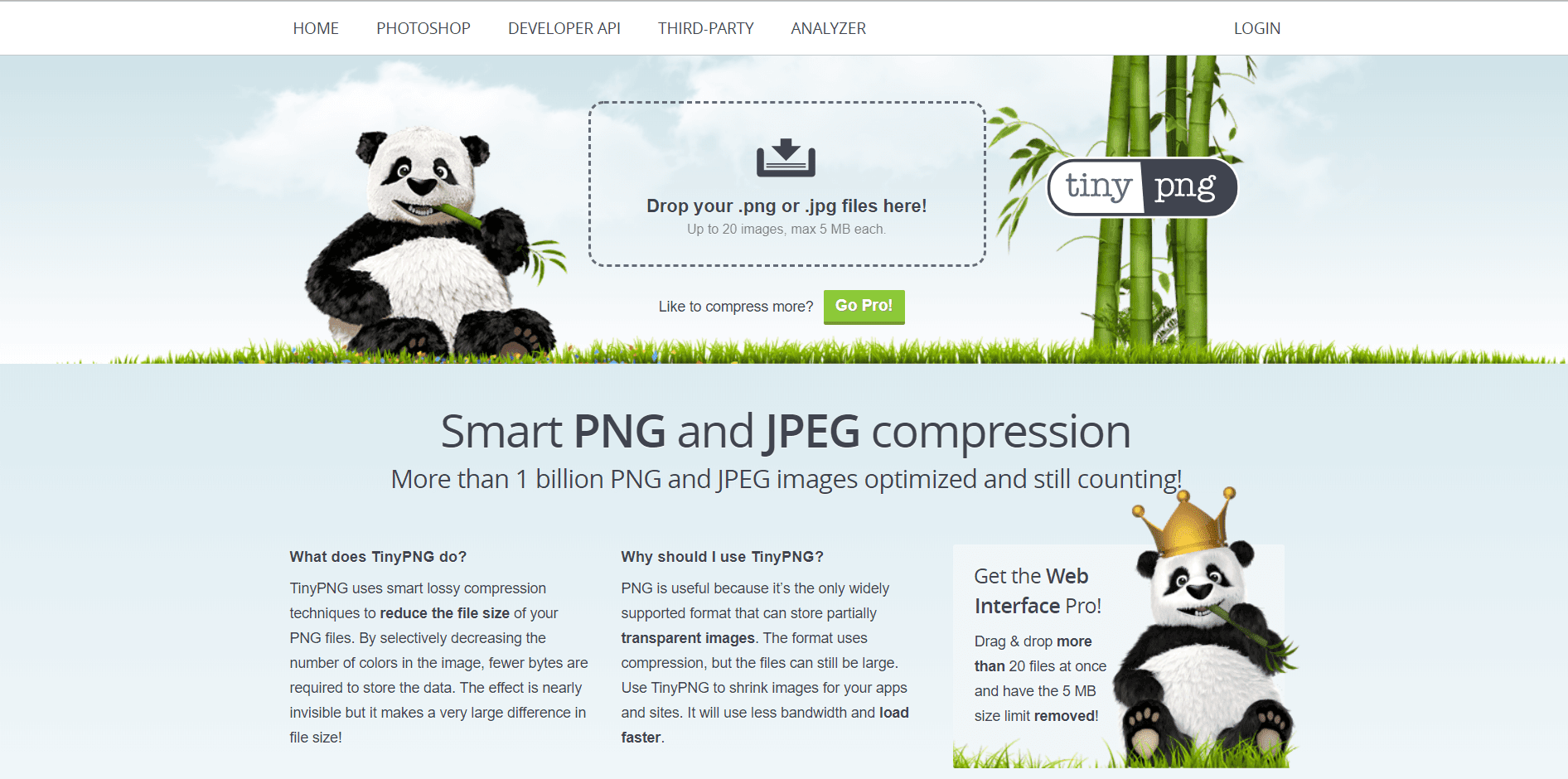 TinyPNG homepage. Image of a panda eating bamboo as well as other text written on the screen.